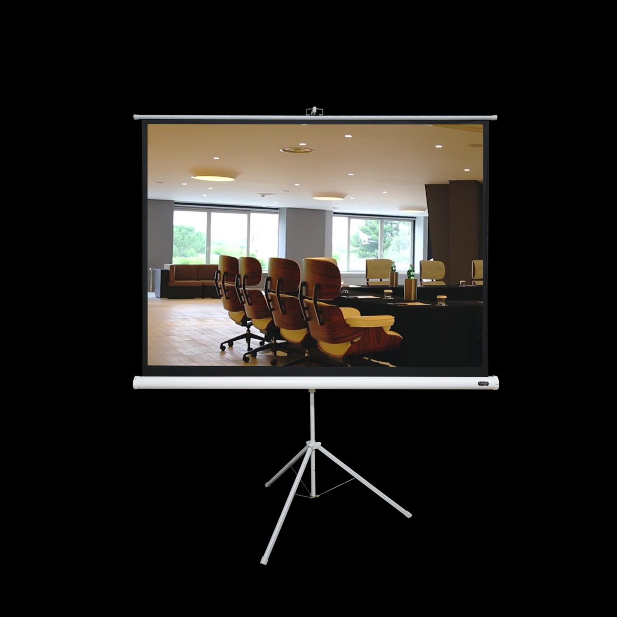 Tripod Screen